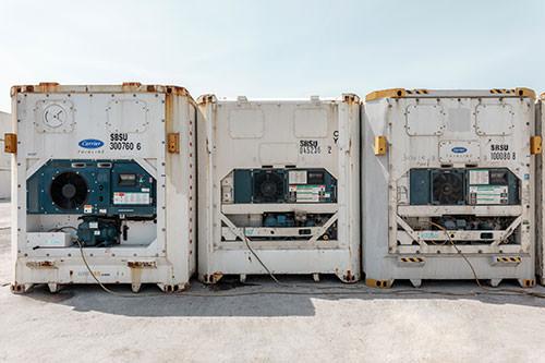 Μεταφορά σε ψυγείο για Κύπρο.